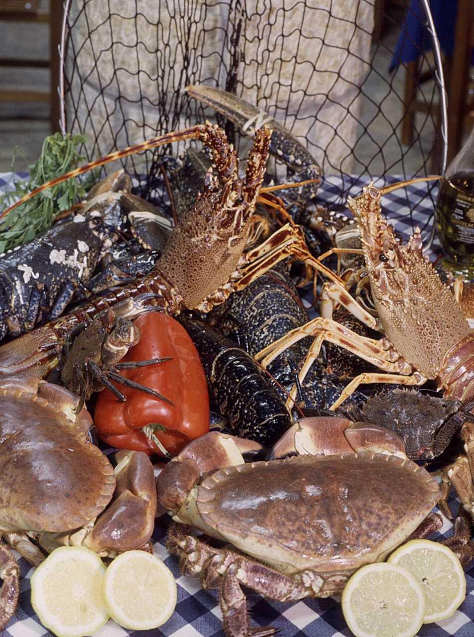 Jornadas Gastronómicas del Marisco